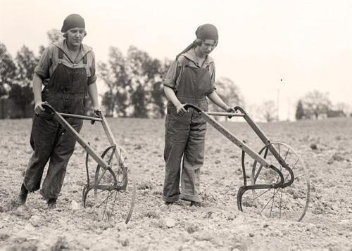 hand plow